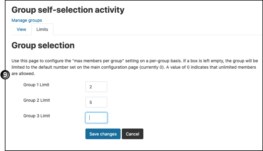 Group self-selection activity max members per group on a per-group basis