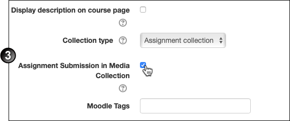 "Clicking on the ""Assignment Submission in Media collection"" checkbox"