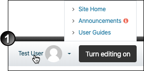 Moodle profile button