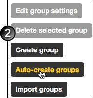 Click auto create groups button