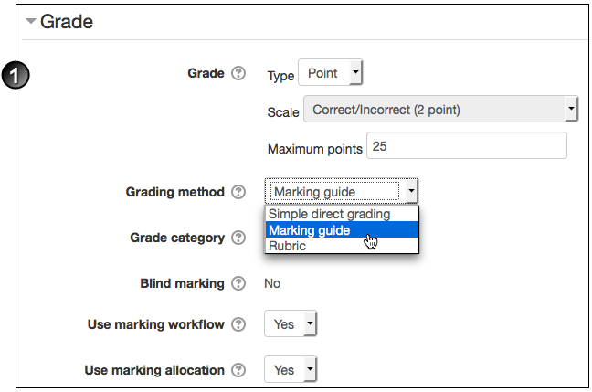 moodle_mark_assignment1.1.png